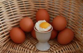 eggs-750847_1920