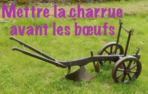 Mettez-vous souvent la charrue avant les boeufs ? Découvrez cette expression en français afin de savoir.