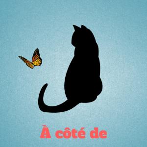 a-cote-de-preposition-francais