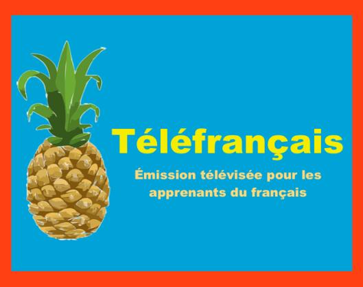 Un ananas qui parle ? Découvrir téléfrançais - une émissions télé pour les apprenants du français