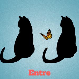 entre-preposition-francais