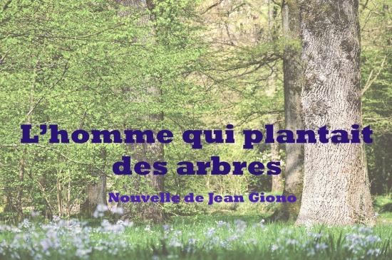 l'homme-qui-plantait-des-arbres