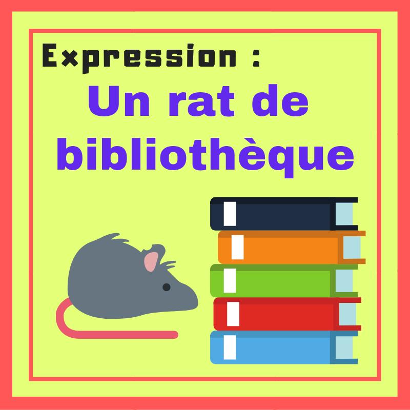 Êtes-vous un rat de bibliothèque ? Apprenez cette expression !
