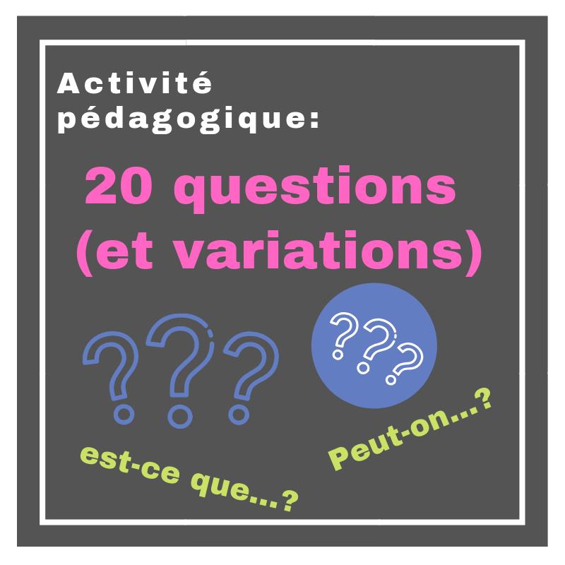 Faites pratiquer les questions en français avec cette activité